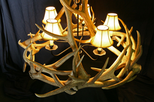 Model #ECR2: Elk Antler Chandelier