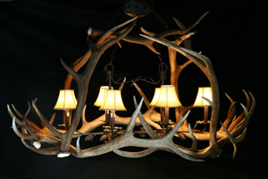 Model #ECO1: Elk Antler Chandelier
