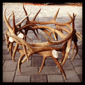 Round elk horn table, no glass