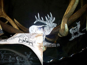 Detail that can be put on Glass or Antler